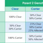 Hyperuricosuria DNA Test Result Chart