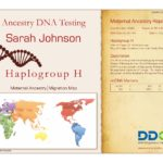 An example Maternal Lineage Ancestry DNA Test Certificate